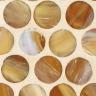 Teak Silk Pennyround Mosaic