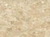 Panna Beige Threshold